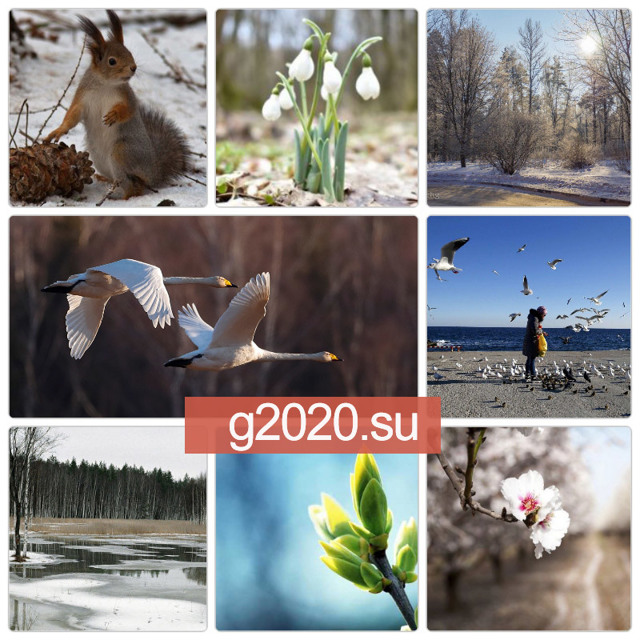 Каким будет июнь 2020 прогноз погоды