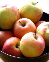 Что приготовить с большого количества яблок: рецепты с фото